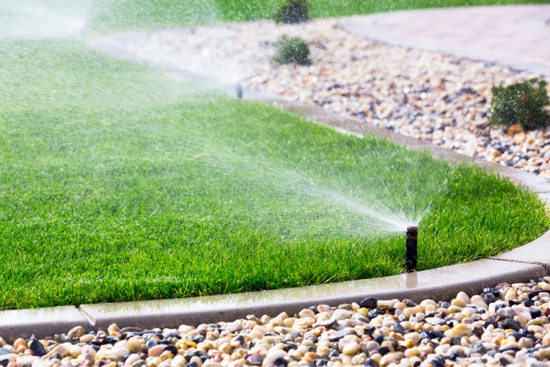 Best and Most Inexpensive Way to Tune Up Your Sprinkler System